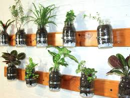 upcycled hanging plastic bottle planter