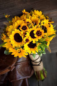 macam bunga dan maknanya