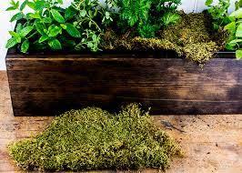 fresh taste diy herb box garden club