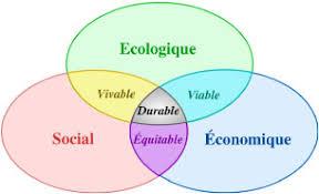 Memoire Online - L'éducation et la formation au développement durable: quels  enjeux pour l'Afrique? - Léon GOAYOYO
