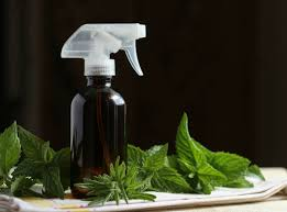 10 homemade air freshener recipes the