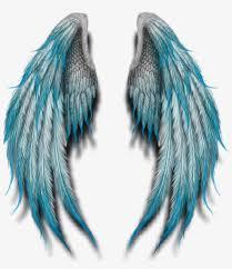 angelwings angels angel wings feathers