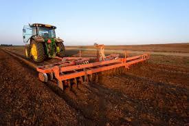 Preţul unui hectar de teren agricol în România ajunge la 60.000 de ...