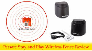Petsafe Stay And Play Wireless Fence Reviews Youtube
