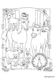 Paarden Kleurplaat 708195 Kleurplaat