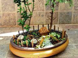 theme for a mini garden deccan herald