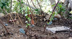 fairy garden park simple practical