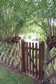 Living Fence Garden Gate Design Willow Fence Living Willow Fence