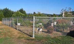Chain Link Fences Hillcrest Fencing