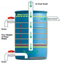 clear garden ponds filtration
