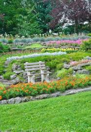 summer park bench in a garden flowers