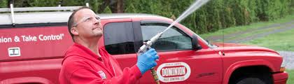 Residential | Commercial Exterminator | Full-Service Pest Control |  Dominion Pest Control