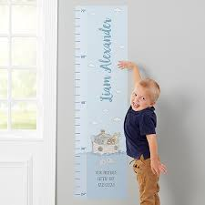 Precious Moments Noah S Ark Boy Vinyl Growth Chart Wall Decal