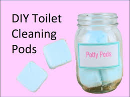 diy toilet cleaning pods you