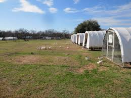 Update On Portable Chicken Coop Designs Claborn Farms