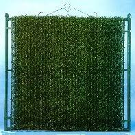 For Evergreen Chainlink Fence Lattice