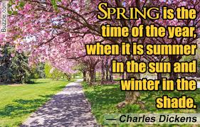 funny and cute spring quotes that will make you smile all day