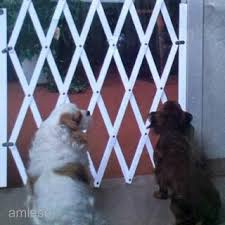 Dog Fence Indoor Wooden Protector Home Doorway Room Dog Gate Pet Safety Protection Room Divider Gate Shopee Singapore