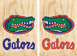 Amazon Com Set Of 17 Stickers For Cornhole Wall Car Decal Florida Gators Everything Else