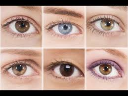 eye makeup for your eye shape