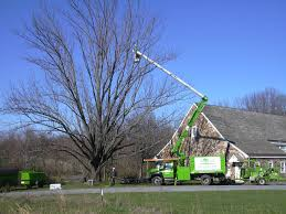 Giroud Tree Service Celebrates Arbor Day with Gifts of Tree Care to Bucks  County Audubon Society and Hope Lodge