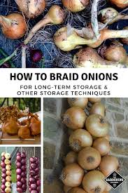 braid onions for long term storage