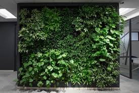 wakefield ma living plant wall design