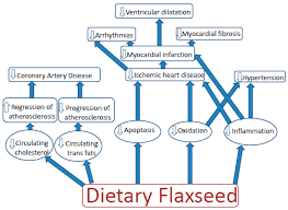tary flaxseed as a strategy for
