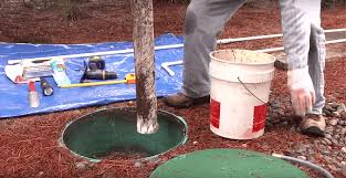 the best septic tank treatment for 2020