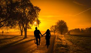 Free Images : sunset, couple, bicycle, dating, cycle, fun, holiday,  vintage, summer, romance, lifestyle, woman, road, tree, holding hands,  love, outdoors, riding, healthy, sports, togetherness, vacations,  valentine's day, dusk, even, nature, sky,