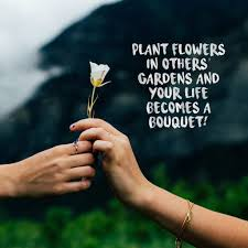 inspirational flower quotes to warm you up in cold weather