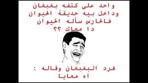 نكات عراقية قصيرة ومضحكة لم يسبق له مثيل الصور Tier3 Xyz