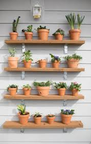 diy plant shelving wall succulents