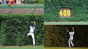 Ivy Helps Give Wrigley Field Iconic Look Mlb Com