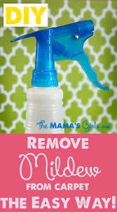 removing mildew odor from carpet