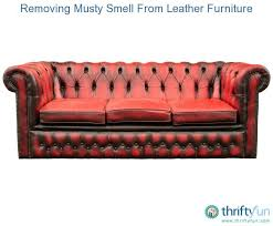 removing musty smell from leather