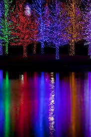 Trees Tightly Wrapped In Led Lights For The Christmas Holidays R Wall Decal Wallmonkeys Com