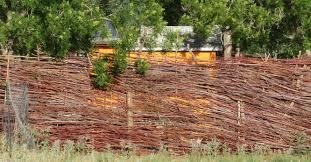 Salt Cedar Fence Always Backroads