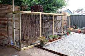 Outdoor Cat Enclosures For Sale For 2020 Ideas On Foter
