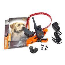 Sportdog 2 Dog Fieldtrainer Sd 425x Remote Trainer Combo