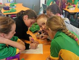 Putting brains to the test | Whitsunday Times