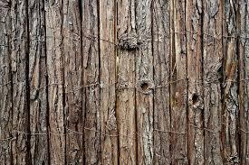 Fence Post Wood Rough Post Untreated Fence Bark Wooden Fence Timber Pikist