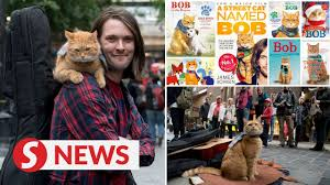 Bob saved my life': Street cat who inspired books and film dies - YouTube