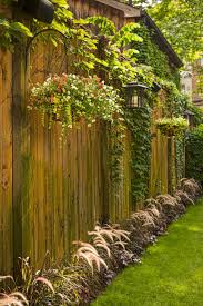 Softening A Privacy Fence Thinking Of Putting A Large Fence Up On One Side Anyway To Keep The Dogs From The F Backyard Fences Backyard Landscaping Backyard