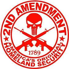 1789 2nd Amendment Punisher Large Decal Big America Sticker Size 7 20 Inches