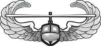 Army Air Assault Wings Vinyl Transfer Decal
