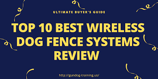 Best Wireless Dog Fence Systems Review Ultimate Buyer S Guide