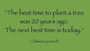 top go green quotes of all times bleedgreen go green quotes