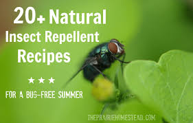 20 homemade insect repellent recipes