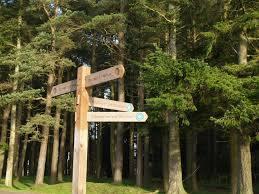 Signpost, Ada Hill © Chris Eilbeck :: Geograph Britain and Ireland